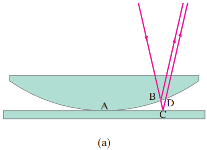 Newton's rings. (a) Light rays reflected from upper and lower surfaces of the thin air gap can interfere.