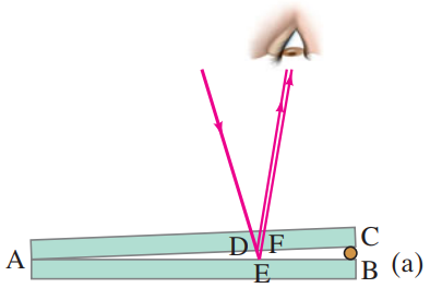 Light rays reflected from the upper and lower surfaces of a thin wedge of air (between two glass plates) interfere to produce bright and dark bands.